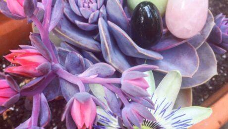huevos vaginales de jade cuarzo rosa y obsidiana